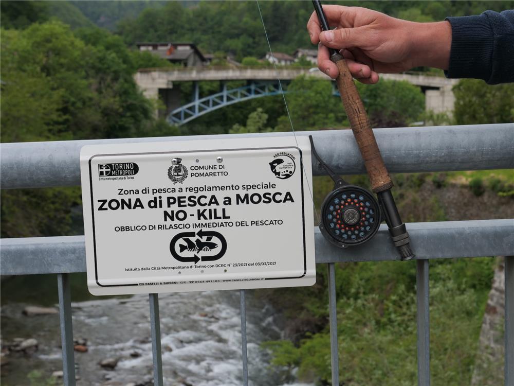 ZONA DI PESCA NO-KILL